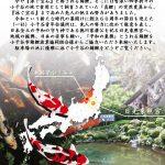 日光東照宮・錦鯉奉納・錦鯉発祥の地・小千谷・石動神社・小千谷JC